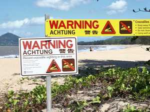 Beach sunbakers oblivious to lurking croc threat