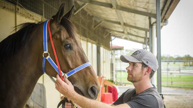 RELAX: Trainer looks for calmer approach to second win