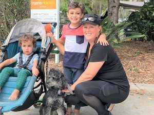 High value visitors go begging as dog rules bite