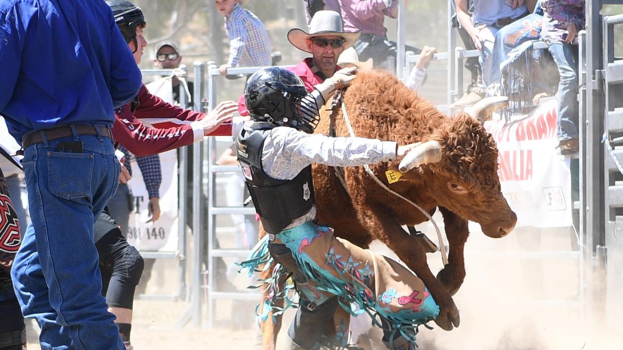 MT MORGAN JUNIOR RODEO U15 Mini Bull Ride: Dawson Foden