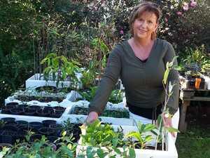 GROWING CONCERN: Karen's new career rebuilding the area