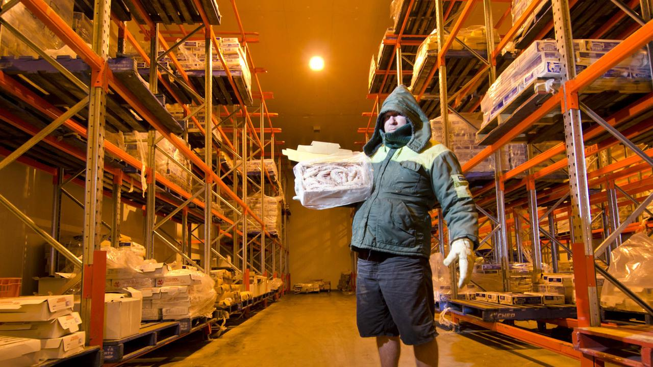 Manager of Australian Ocean King Prawn Company Stephen Murphy shows of his seafood products in the company's cold room. Photo: File