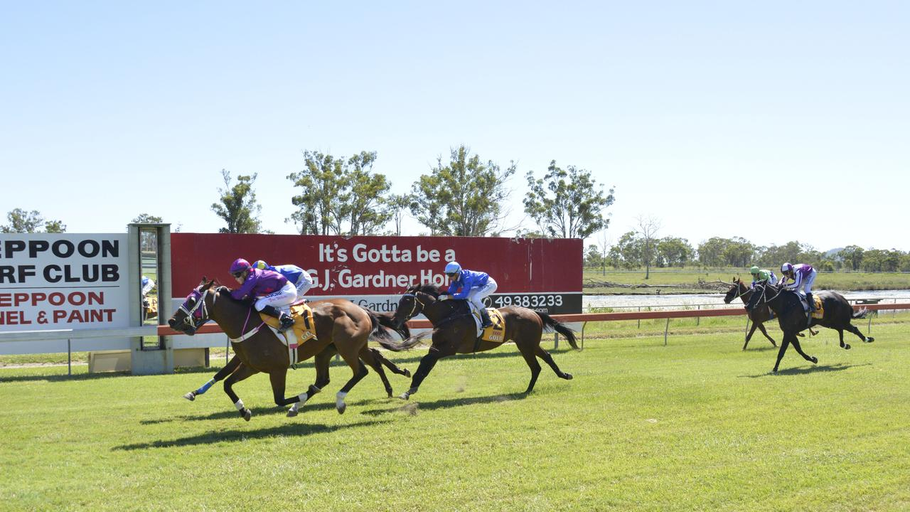 The Tim Cook trained, I Can I Will I Am, holds on in a tight finish at Keppel Park earlier in the year.