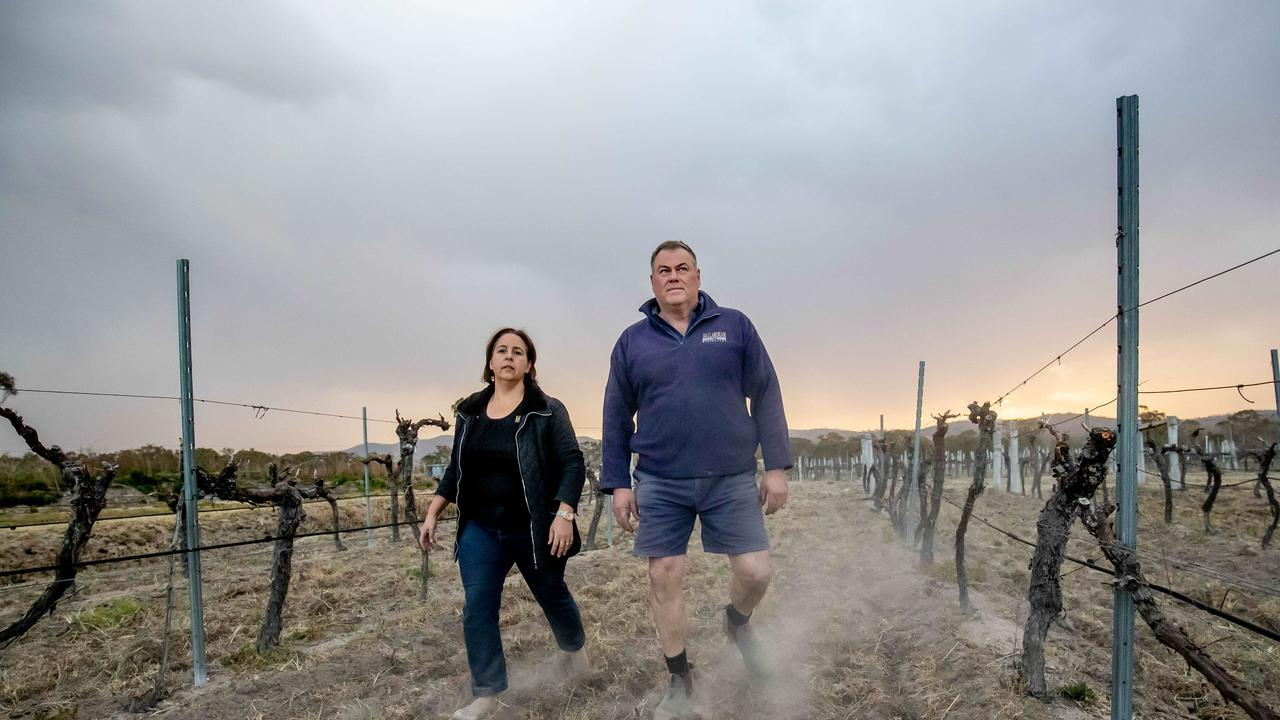 QUICK DOWNTURN: Wineries on the Granite Belt have suffered devastating damage to vineyards after a black frost hit the region last weekend. Picture by Luke Marsden.