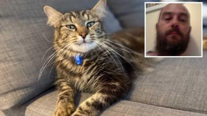 Couple's shocking cat cruelty revealed