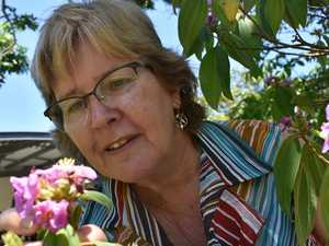 Mackay artists show off the beauty in botany