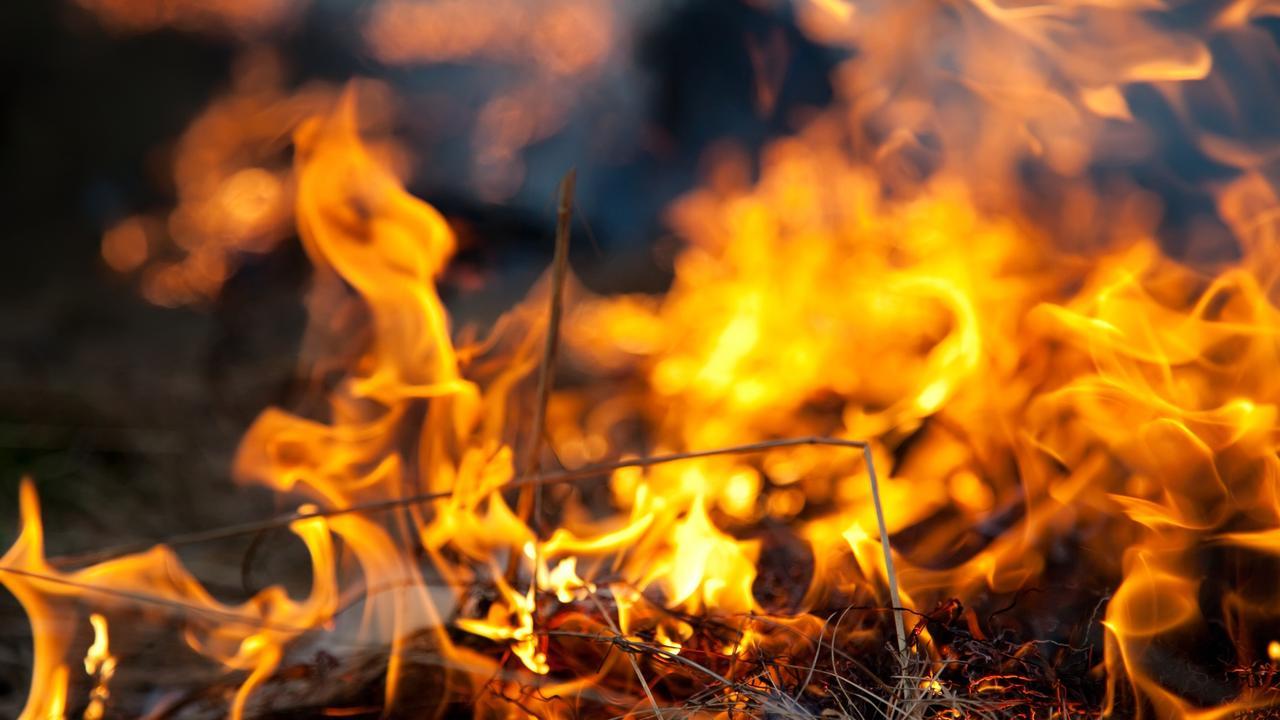Wildfire devours dry grass.