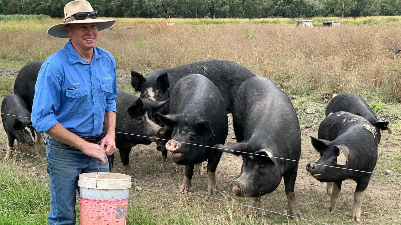 Rob Bauman feeds his pigs at Freckle Farm, Eton.