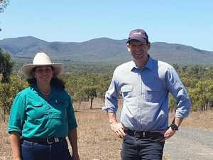 LNP members want Connors River Dam project back on table