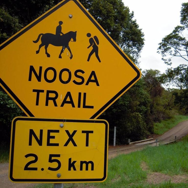 The trail network includes eight scenic trails and more than 130km within the Noosa Biosphere Reserve.