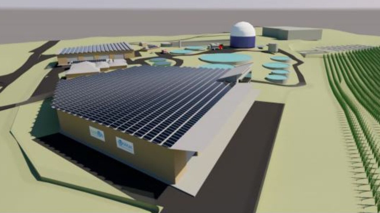 GREEN OUTLOOK: 3D Concept of fully developed Bundaberg bioHub site (subject to planning and approvals).