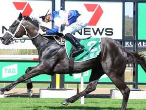 Waller follows Group 1 trifecta with Ipswich winner