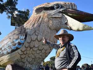 Giant kookaburra makes a special trip back to CQ region