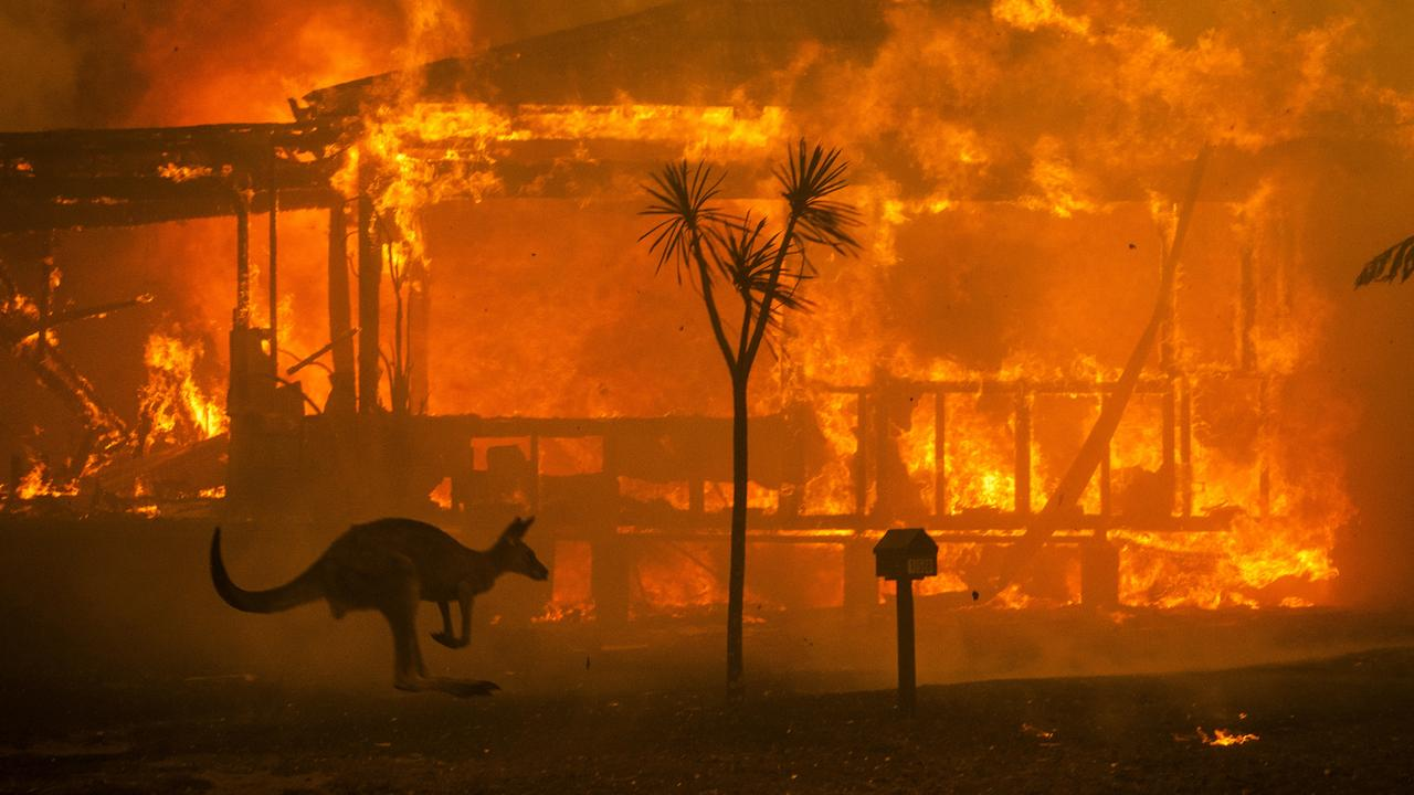 An evocative scene of the summer bushfires as kangaroo passes a burning house at Conjola. Picture: Matthew Abbott