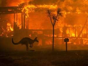 Book denies bushfires were linked to climate change