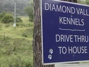 Online avalanche buries kennel expansion bid