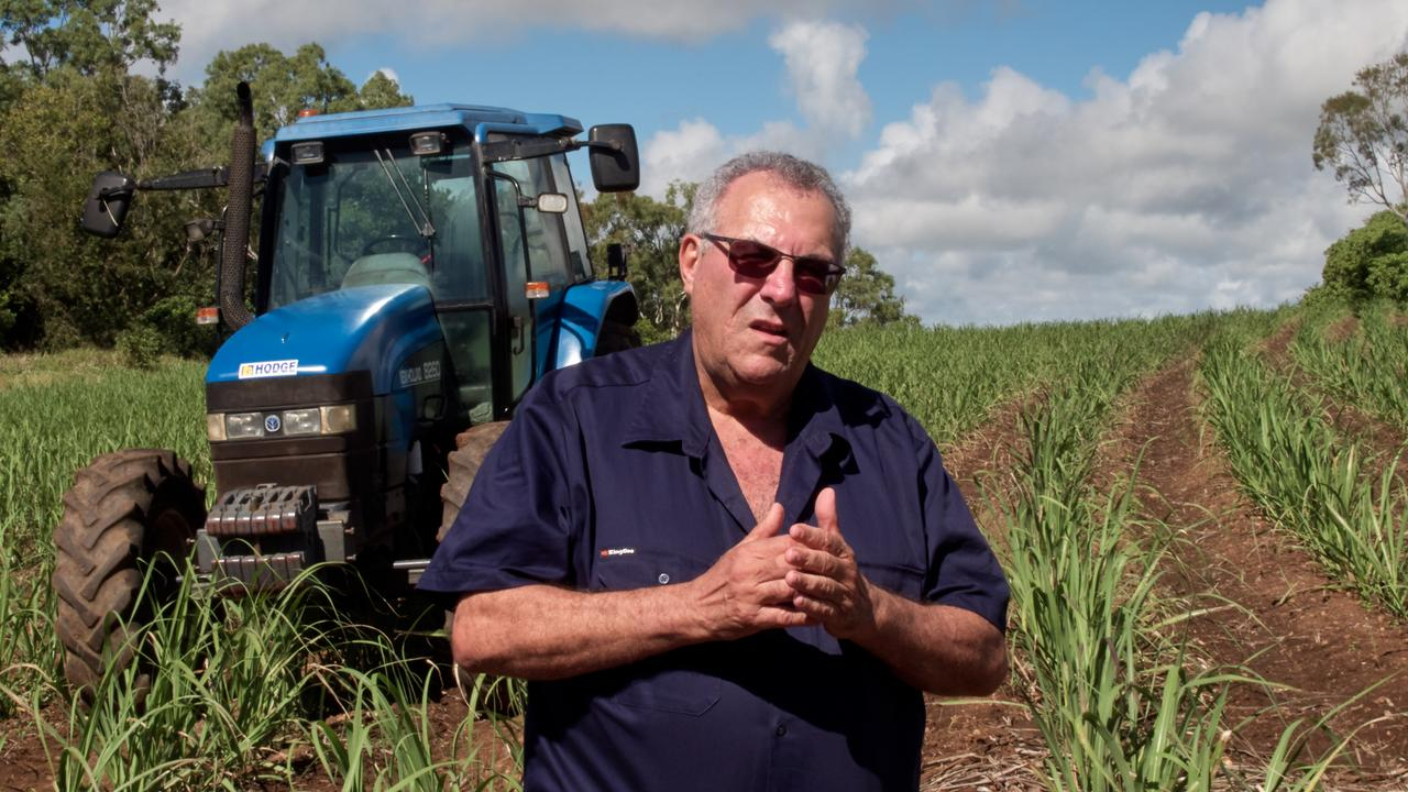 Canegrowers chairman Paul Schembri responds to the newly-released report on Queensland's controversial reef regulations. Photo: File