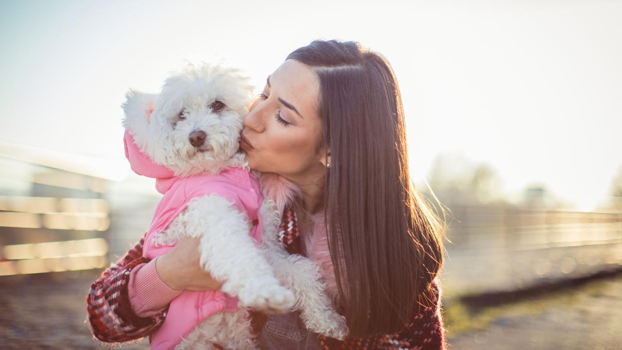 Pet ownership has been on the rise during COVID-19 as more people work from home but animal experts have warned aspiring owners to think carefully.