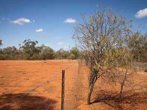 $200K grants inspire Burnett farmers to put on thinking caps