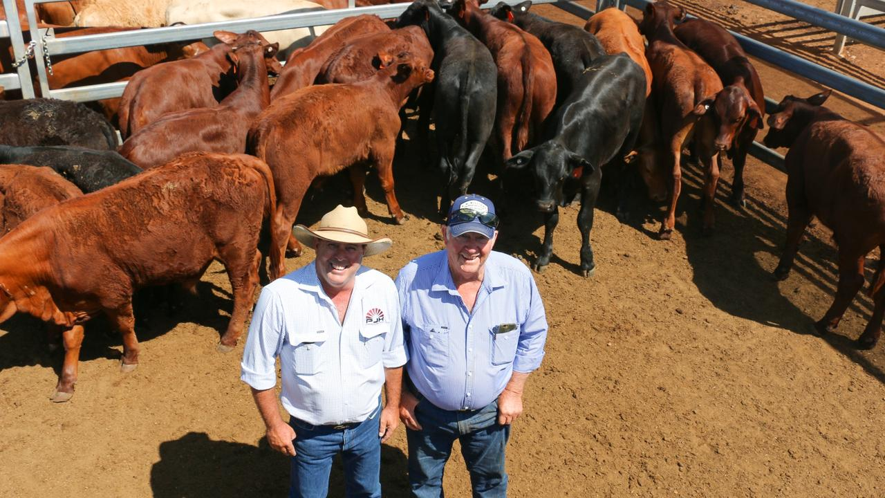 PJH agent Steven Goodhew and Cecil Russell with a pen of CJ Russell steers. The steers sold to 568c/kg, reaching a top of $1,566 to average $1,346.