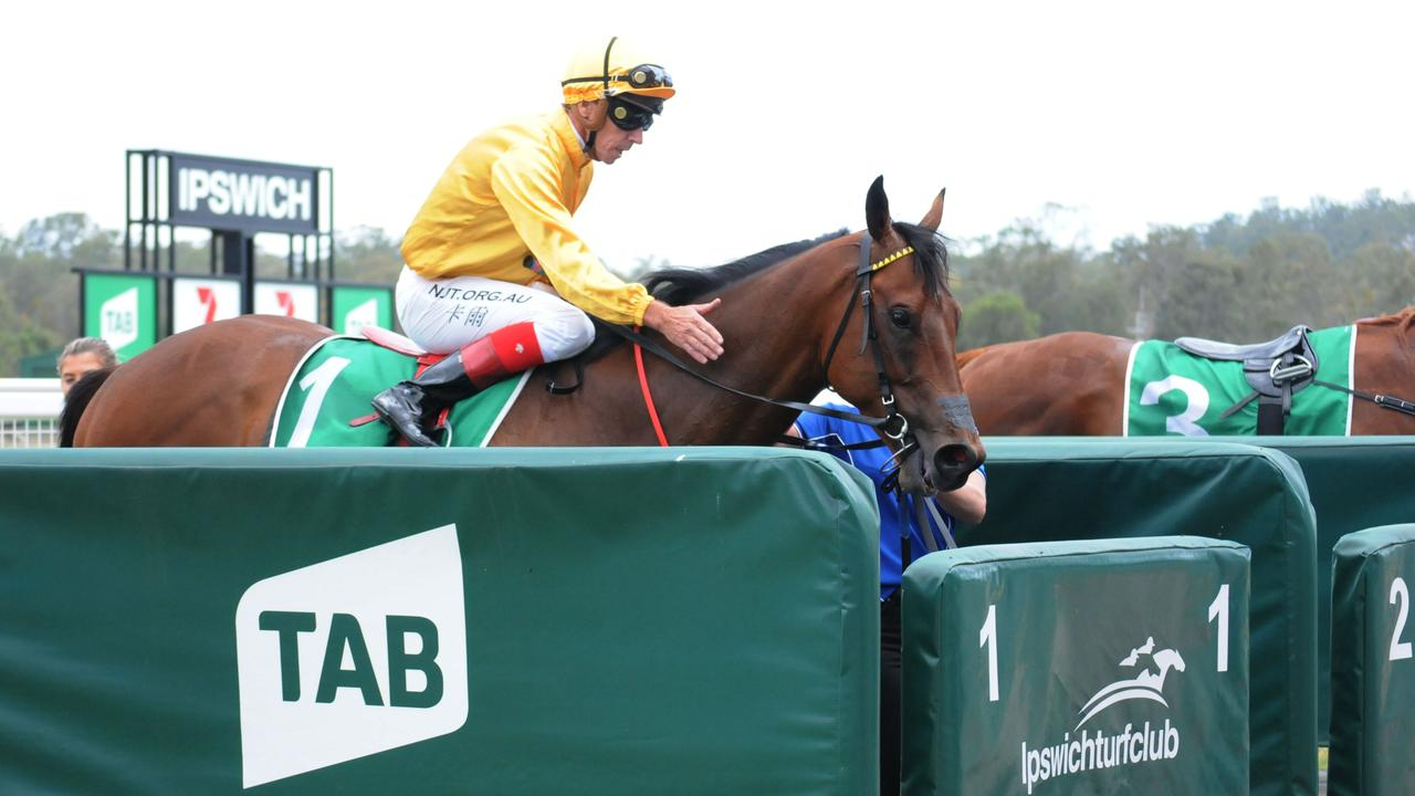 Ipswich race winner Invincore, ridden by Michael Cahill and trained by Trent Edmonds. Picture: Claire Power