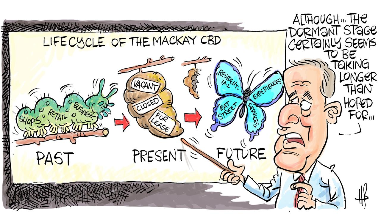 Harry Bruce's take on plans to revive the Mackay CBD. Today's Harry Bruce cartoon has been brought to you by Dawson MP George Christensen. George is a proud supporter of free speech and the ability of our cartoonists to take the mickey out of the political class.