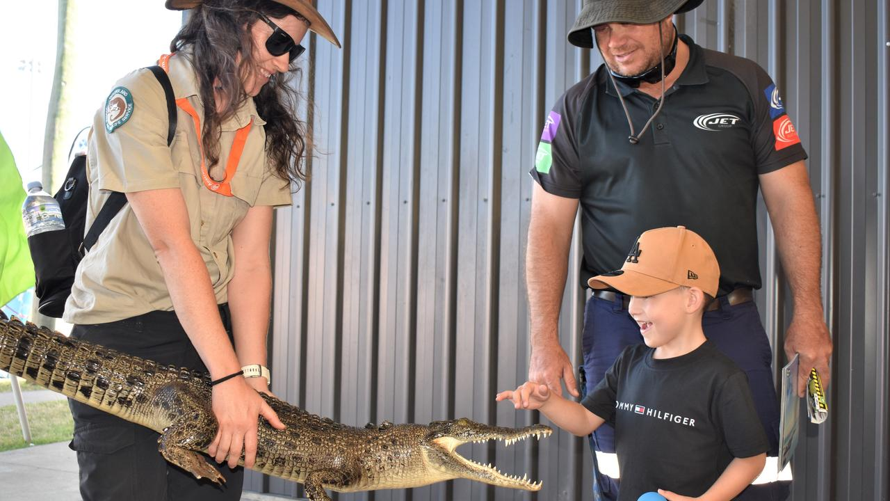 Crocodiles on display from the Queensland Fauna and Wildlife Service team at the 2020 Mackay Home Show and Caravan, Camping Expo. Picture: Heidi Petith