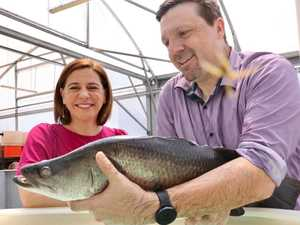 $67m for fish farm industry
