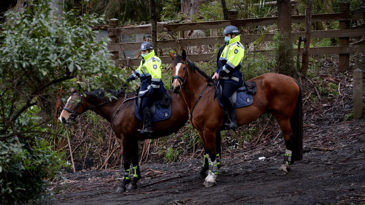 Victoria Police mounted branch searching the Yarra Ranges near Warburton for William Wall who has been missing since yesterday. Picture: Andrew Henshaw