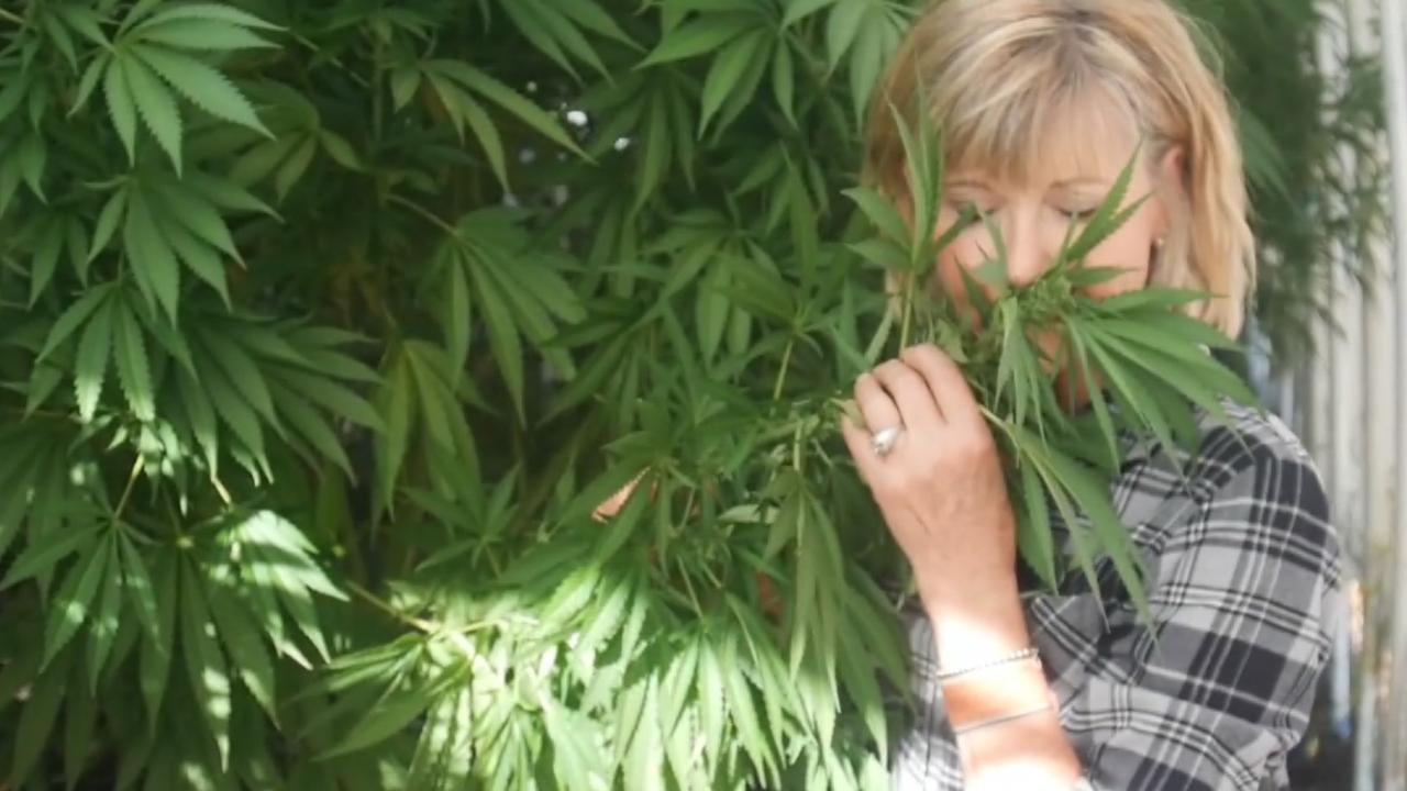 Olivia Newton-John inspects a cannabis plant in her Californian greenhouse. Pic: Supplied