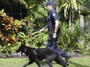 Dog squad locates suspect hiding under tarps, tables