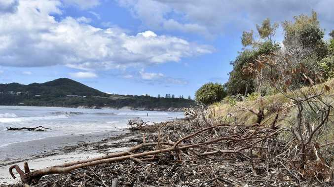 BEACH CRISIS: Swallow our pride and ask Gold Coast for help