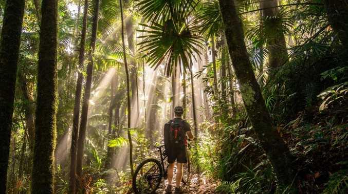 $500k pledge to Pioneer Valley Mountain Bike trail