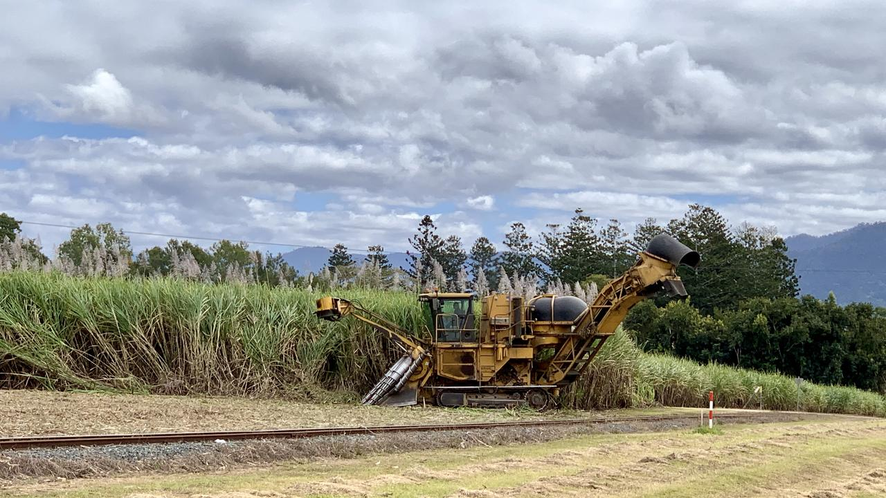Weekly crush report on Proserpine and Plane Creek sugar mills. Picture: Rae Wilson