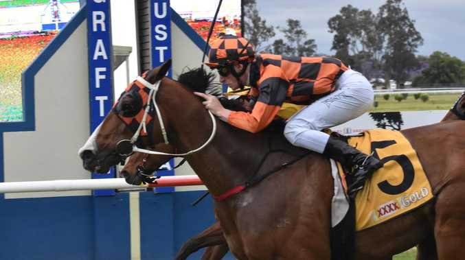 10-yr-old warhorse storms field in Jacaranda Prelude