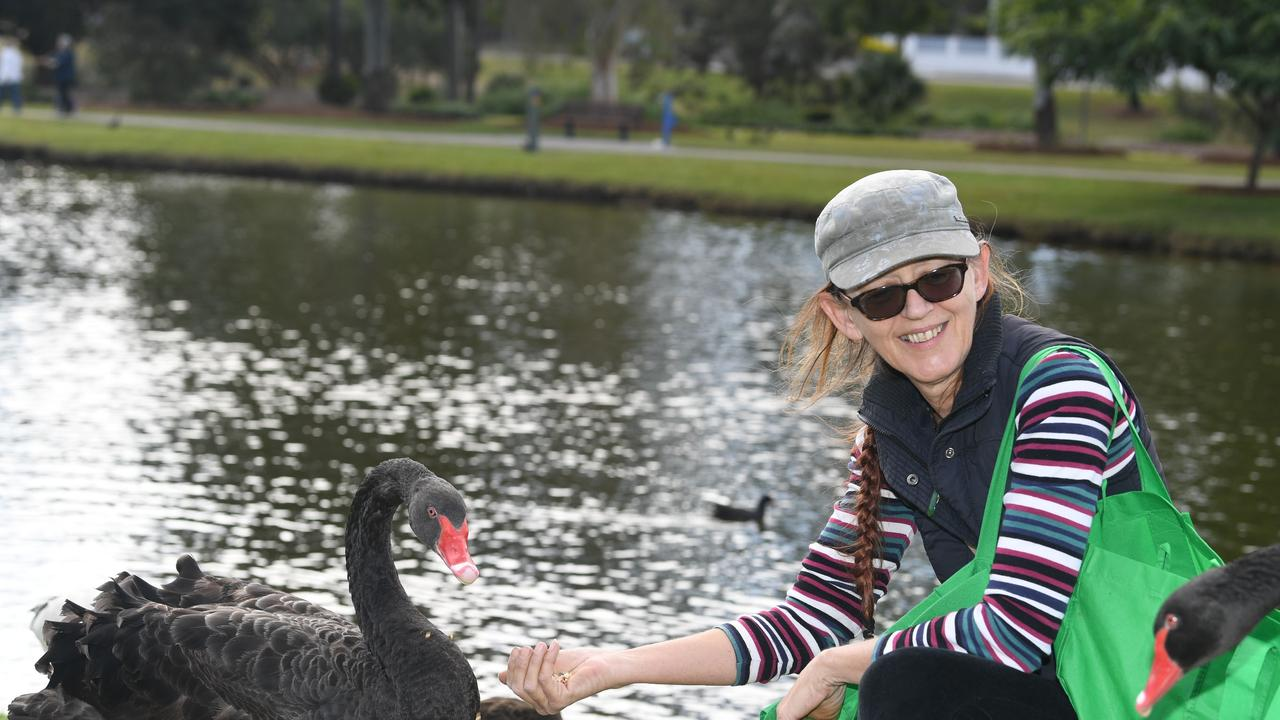 Janine Graham feeding the swans at Lake Alford, where Eats and Treats will take place on Friday, 4-9pm.