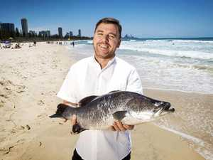 Aussie fishers fight to brand barramundi