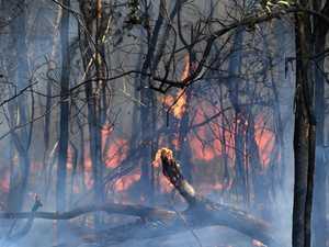 Crews called to Ambrose bushfire to find false alarm