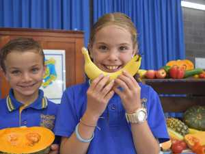 Bowen one of three locations for healthy eating initiative
