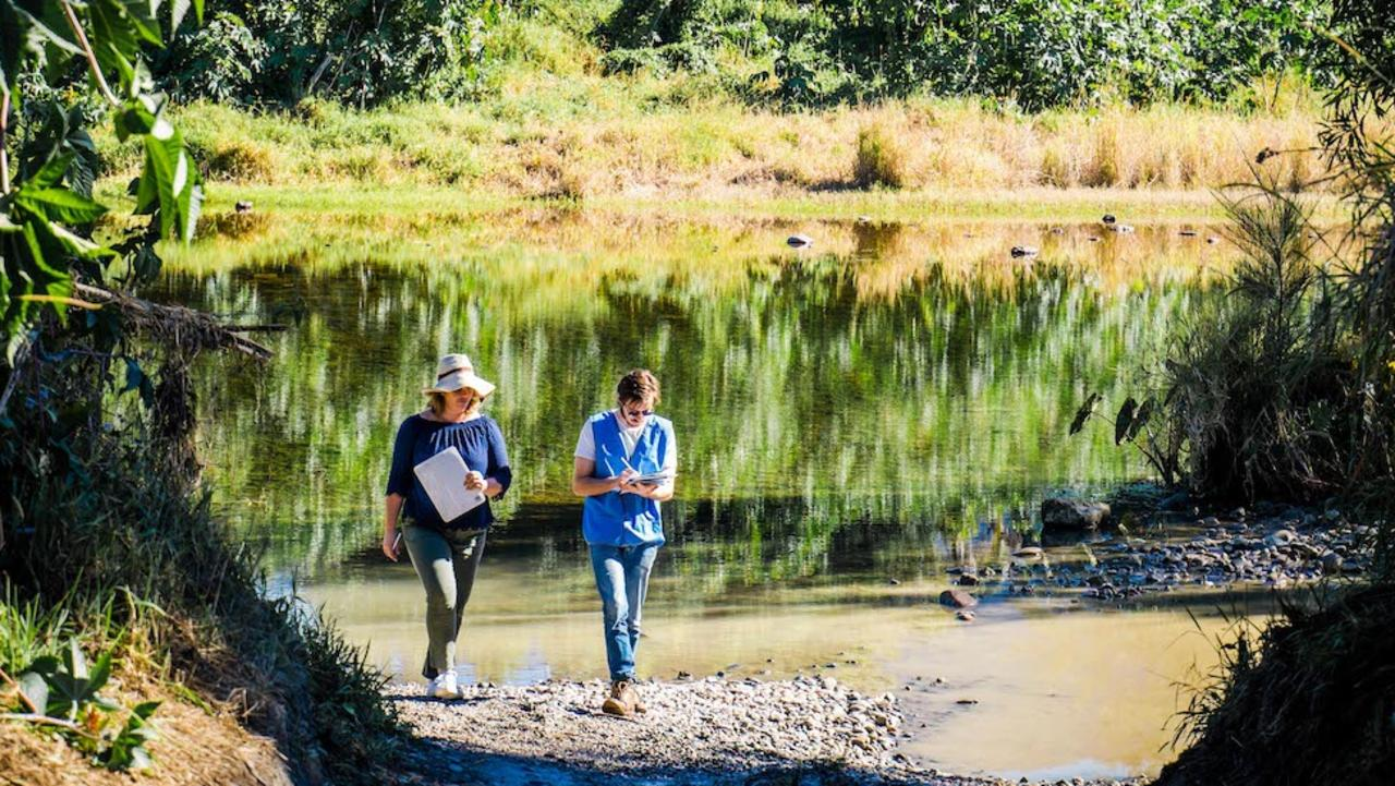 Bellingen Riverwatch has been monitoring water quality in the Bellinger River since a mass mortality event wiped out much of the Bellinger River snapping turtle population. Photo: Shane Ruming
