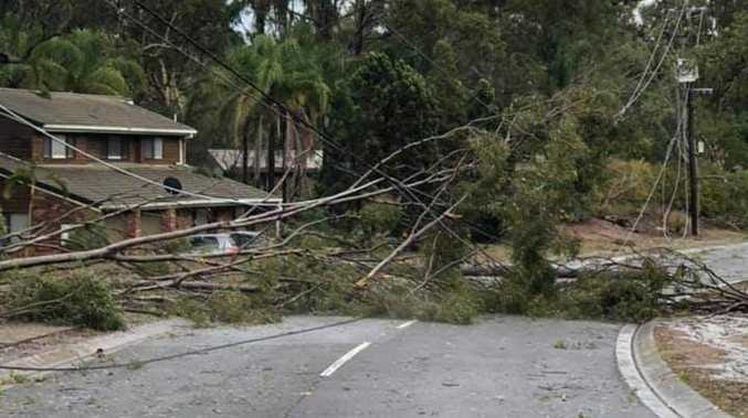 Thousands without power as wild storms pull down powerlines