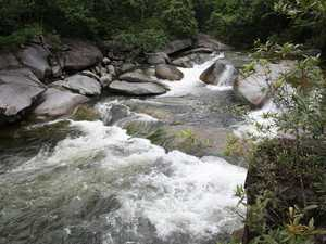 Cursed swimming hole lures 19 to death