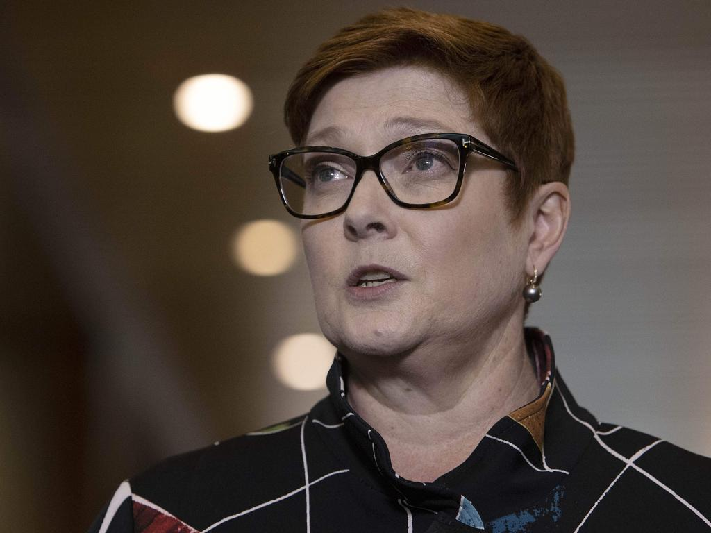 Foreign Minister Marise Payne has described the incident as 'grossly disturbing'. Picture: NCA NewsWire / Gary Ramage