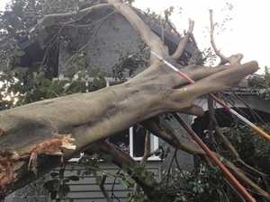 Wild winds wreak havoc along east coast