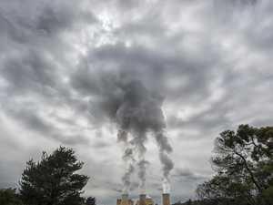 Conservation council criticises hydrogen plans
