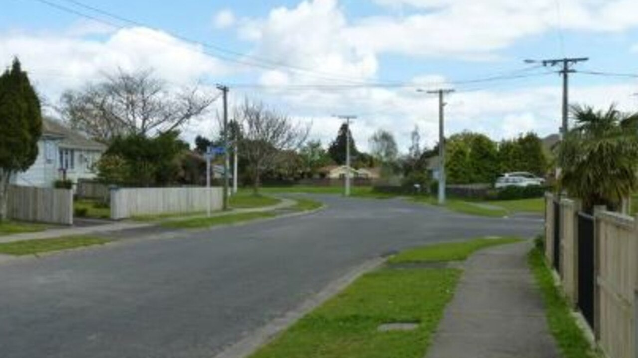 A newborn baby has died after it mauled to death by a dog in Hamilton, NZ. Picture: Supplied