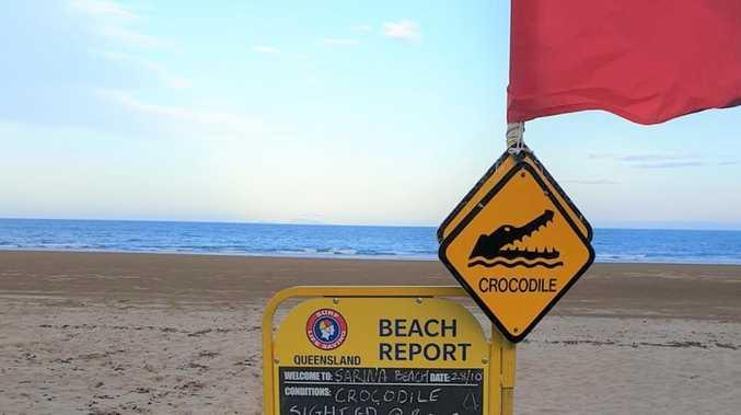 Sarina Beach closed after large croc sighting