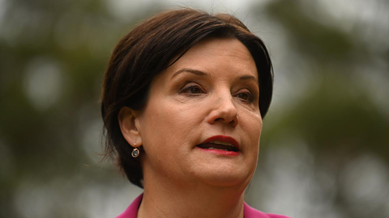 NSW Labor Leader Jodi McKay and her party have referred the Premier to the police. Picture: NCA NewsWire / Steven Saphore