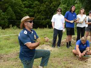 Students launch new project to increase koala habitat