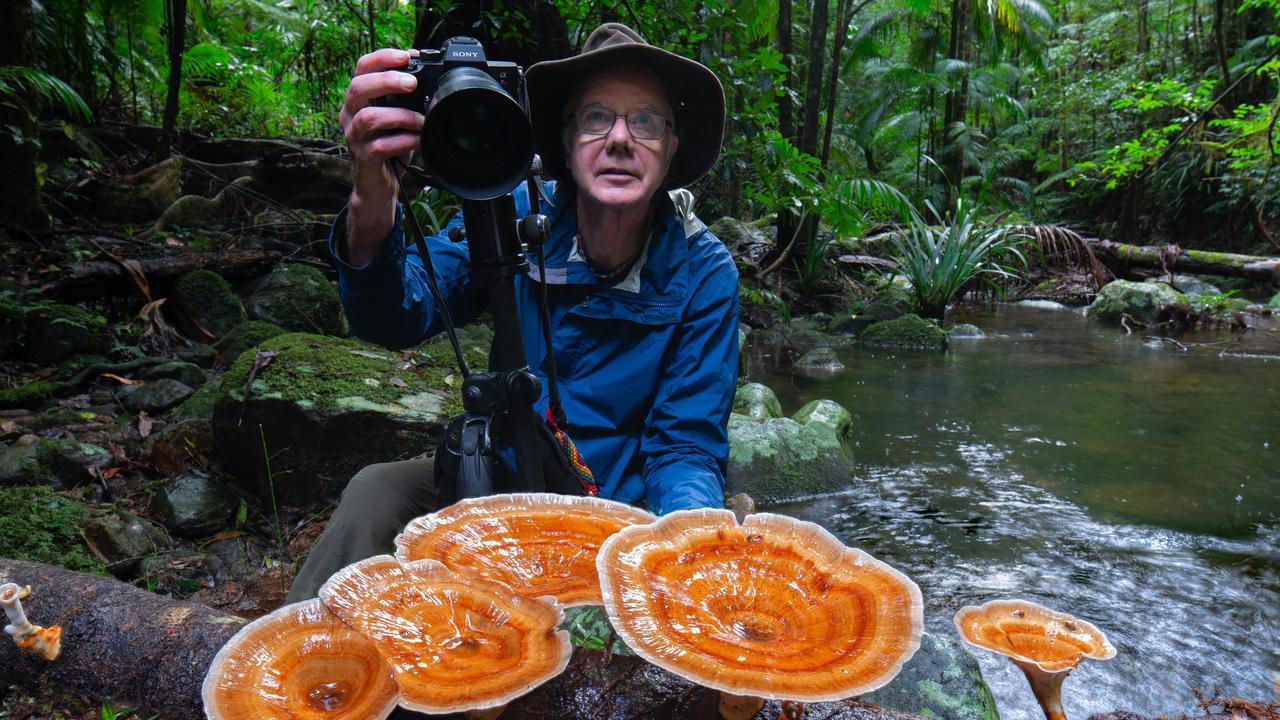 Northern Rivers filmmaker Steven Axford.